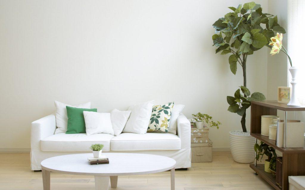 Wallpaper – mistakes to avoid